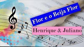 Flor E O Beija-Flor - Notas Flauta Doce