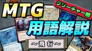 【#MTG】MTG用語解説 ~飛行~【#初心者】