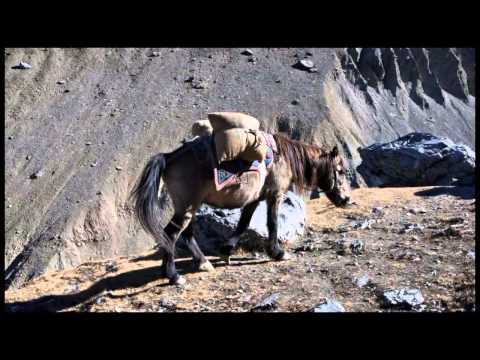 RE-MI in NEPAL 14