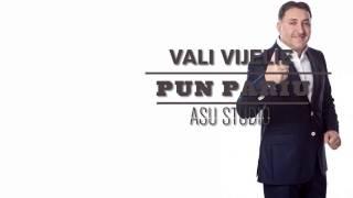 VALI VIJELIE - PUN PARIU - OFICIAL HIT 2014