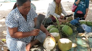 Drink Fresh Coconut from the tree at Kep Province