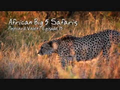 African Big 5 Safari Part 3