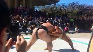 Sumo wrestling BODY SLAM! in Japantown San Francisco 2013-09-22