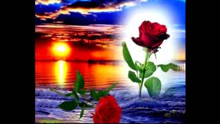 Romeo Santos- solo Bachata Romantica top pop