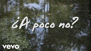 José Madero - ¿A Poco No? (Lyric Video)