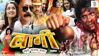 BAAGHI | Superhit Full Bhojpuri Movie | Amrapali Dubey width=