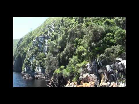 South Africa Part 7.WMV