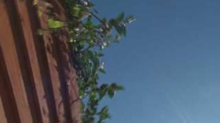 GOOD BYE BLUE SKIES SEPT 09