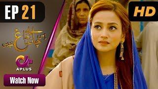 Drama | Is Chand Pe Dagh Nahin - Episode 21 | Aplus ᴴᴰ Dramas | Zarnish Khan, Firdous Jamal width=