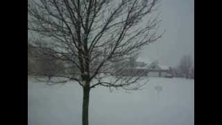 Winter Wonderland In Johnsburg,IL