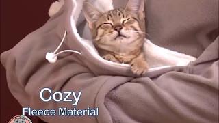 Kitty Roo Pouch Sweatshirt