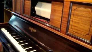 Cuando Tus Ojos Me Miran, Fox trot de A Schujer en Pianola x Horacio Asborno desde Viedma, Argentina