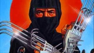 Twilight Racing - The Kawasaki Ninja
