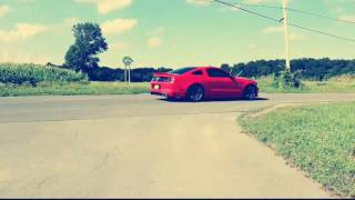 The best mustang edit you'll ever see!