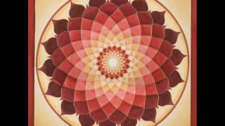 Phanatic Vs Spade - Mandala