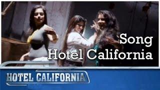 HOTEL CALIFORNIA    Video Song   Theme Song   New Malayalam Movie Song   Anoop Menon   Honey Rose width=
