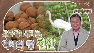 """독립만세를 불렀던, 역사적으로 큰 의미가 있는 """"천안"""" 다시보기"""