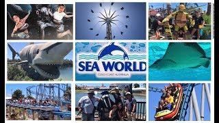 Sea World Gold Coast Australia 2019 CREATURES of THE DEEP