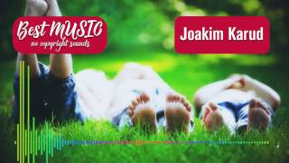 Dizzy - Joakim Karud [Best MUSIC no copyright sounds] Royalty free music background music happy