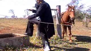 Trailer do Filme De Volta ao Velho Oeste