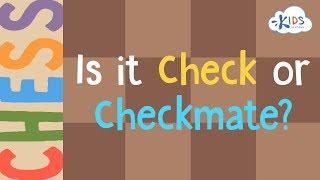 Check vs Checkmate