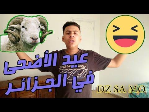عيد الأضحى في الجزائر DZ SAMO إسلام عايش