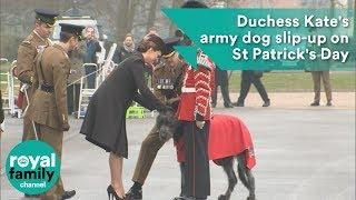 Duchess Kate's army dog slip-up on St Patrick's Day