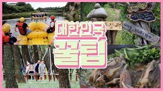 [대한민국 꿀팁] 2020년 8월 25일 다시보기