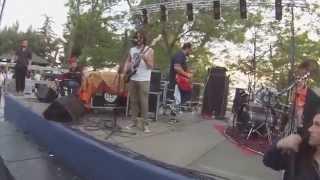 Thelegati-Je so chiù pazzo e te-(live Musicology 25-05-14)