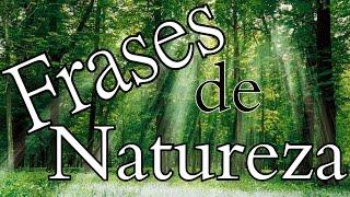 Belas Frases FRASES SOBRE A NATUREZA | MEIO AMBIENTE |