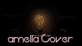 The Fray - How to Save a Life | amella & Ray Cover