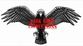 Vegas Dark Bird Intro New
