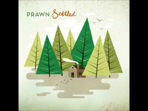 prawn-settled-home