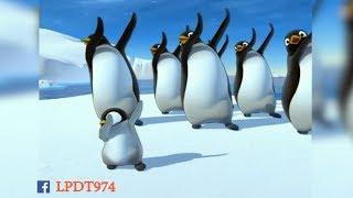 PAPA PINGOUIN DANSE COMME DAB !