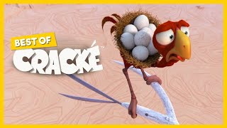 CRACKE - SUDDEN BREAK | Best Compilations | Cartoon for kids | by Squeeze
