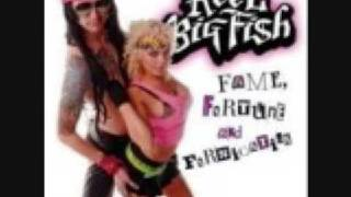 Reel Big Fish - Nothin' But A Good Time (Poison)