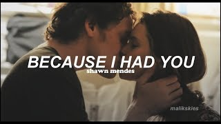 Shawn Mendes - Because I Had You (Traducida al español)