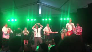 Ay Doctor!! Izalco at Woodford Folk Festival, 2014, Queensland Australia