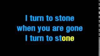 Karaoke Turn to Stone E.L.O.