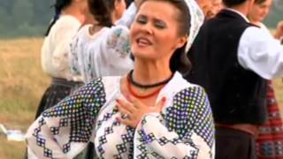 Niculina Stoican - Unde-s anii tineretii