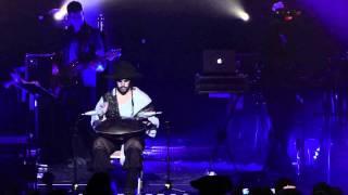 Shpongle feat. Manu Delago Live - Nothing is Something Worth Doing