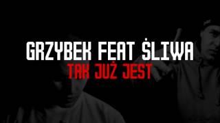 Grzybek Logo Dzielnicy Feat. Śliwa - Tak już jest