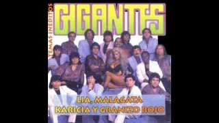 MALAGATA - VOLVERE MI AMOR