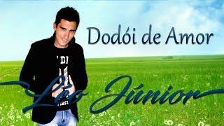 Léo Júnior - Dodói de amor (Áudio Oficial)