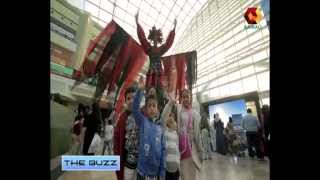 The BUZZ - DSF 2013