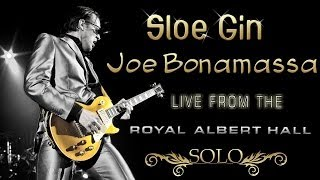 Joe Bonamassa's Sloe Gin Solo (Royal Albert Hall) | Guitar Cover | El Beso del Escorpión