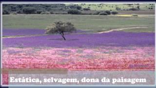 Fado do Alentejo_legendado.wmv