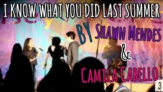 I Know What You Did Last Summer | Shawn Mendes & Camila Cabello cover with James
