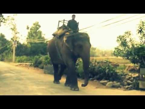 Viaje Nepal 2012.m4v