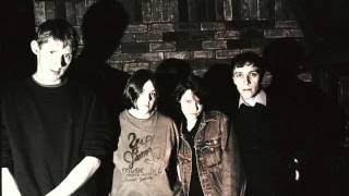 The Pastels feat. Jarvis Cocker - I Picked A Flower